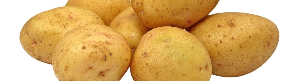 New financing for special potato products