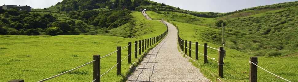 Walking the path of EMIR compliance