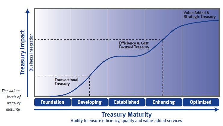 Treasury Maturity